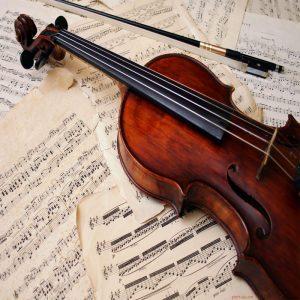 درباره-ساز-ویولن-آلتو-برترین-اساتید-آموزش-ویولن-آلتو-در-آموزشگاه-موسیقی-آوادیس