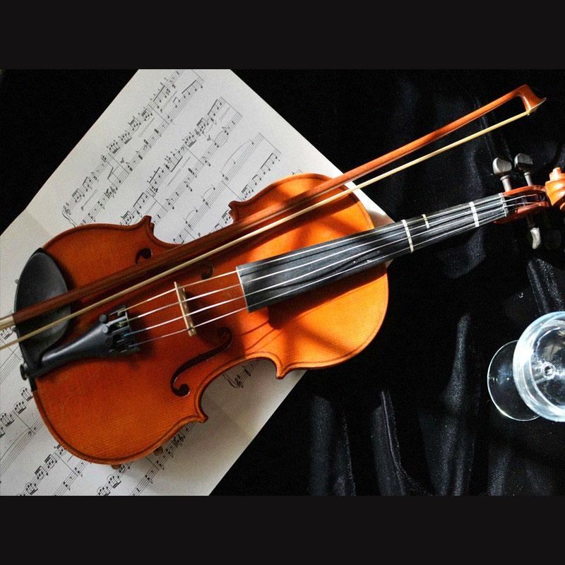 آموزش ساز ویولن در کرج - آموزشگاه موسیقی در کرج | آوادیس